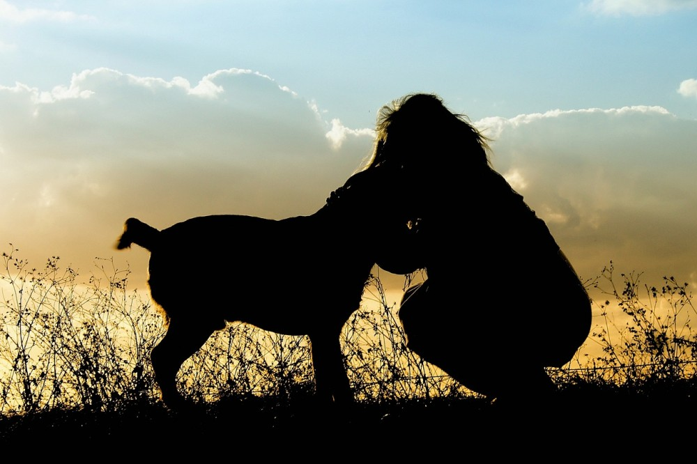 silhouette of a woman hugging a dog