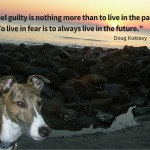 To feel guilty is nothing more than living in the past. To live in fear is to always live in the future._-1
